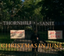 Christmas in June