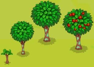 Wild Strawberry-Growth