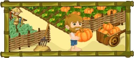 Harvest Fest-Header