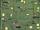 Map (Kin Reimagined)