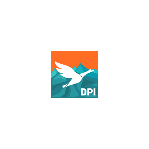 The logo of Dualpoint Interactive.