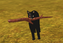 Black with Stick
