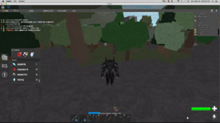 Hackers (names and images) | Roblox Medieval Warfare