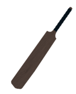 Cricket Bat Screenshot