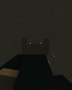 AK12 Iron Sights