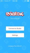 ROBLOX Developer Menu Screen
