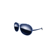 Blue Bird Shades