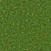 grass texture game painting grass texture roblox wikia fandom powered by