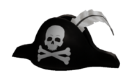 Generic Pirate Hat