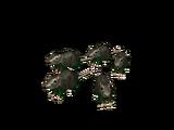 Catálogo:Flayed Rats