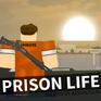 Prision Life