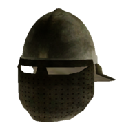 Helm with Face Guard