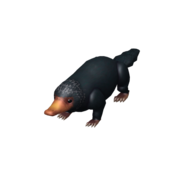 Niffler Companion (New)