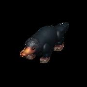 Niffler Companion (New)