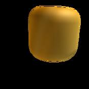 The Golden ROBLOXian Head