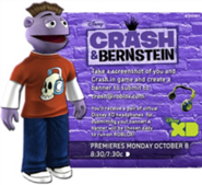 Crash & Bernstein Banner Contest Information