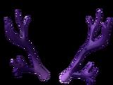 Amethyst Antlers