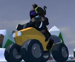 Quad Bike (ATV)