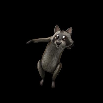 Shoulder Raccoon   Roblox Wikia   FANDOM powered by Wikia