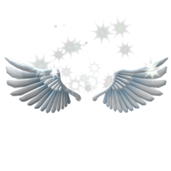 Sparkling Angel Wings