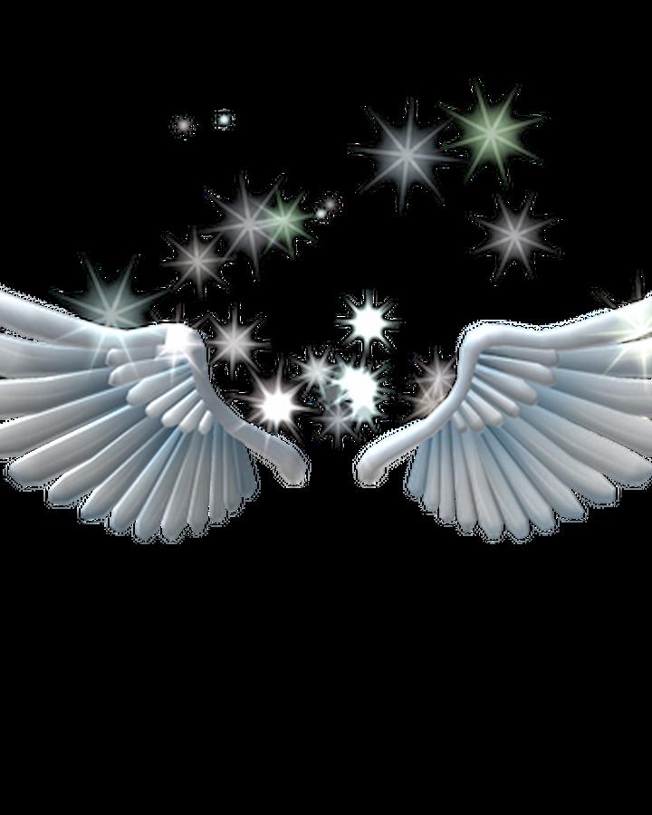 Sparkling Angel Wings Roblox Wikia Fandom