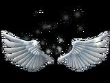 Sparkling Angel Wings