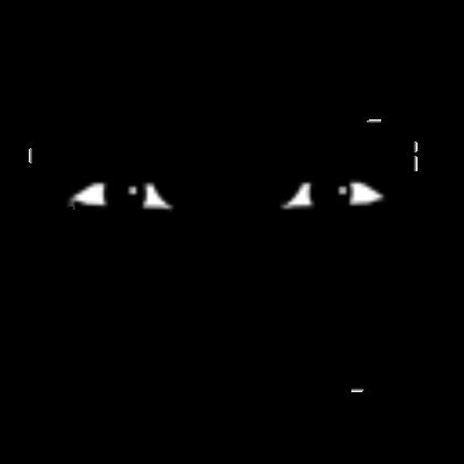 Man Face Roblox Wikia Fandom