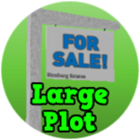 Large Plot