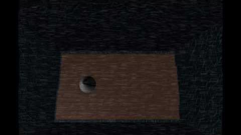 "Entry 43 ""murder"" video"