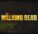 The Walking Dead (Series)