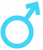 File:Male Blue Symbol2.png