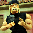 HulkHogan RobotChicken