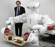 Domestic robot