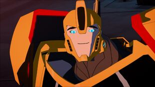 Bumblebee's Cute Facial Expression