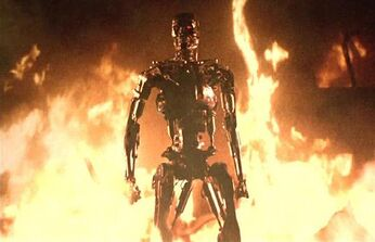 1-Terminator-fire 1416393i