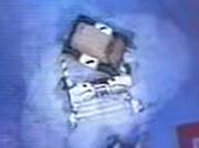 Botugly vs tricerabot