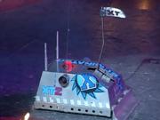 Xterminator axe s4 arena