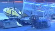 Cutlet vs Bernard vs Alienator