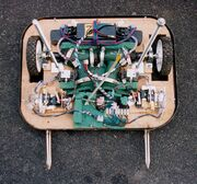 Slippery Stranna Electrics