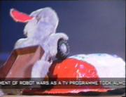 Pill vs rabbit robot
