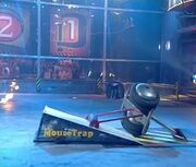 Mousetrap vs Stinger