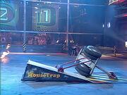 Mousetrap vs Stinger