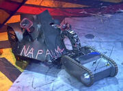 RWEX1 TTT Suicidal Tendencies grips Napalm