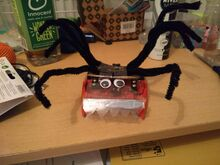 Spiderbot cw555