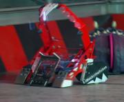 Bucky the robot arena