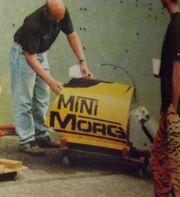MiniMorg6