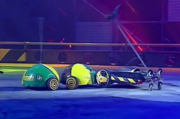 Milly ann bug vs bumblebot