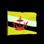 Brunei antenna icon
