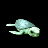 Sea Turtle topper icon