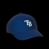 Tampa Bay Rays topper icon
